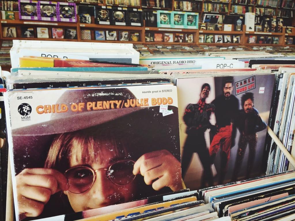 Vinyl Hunt at Half Priced Books
