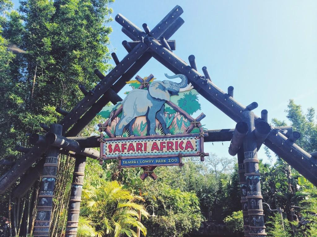 Lowry Park Zoo Safari Africa