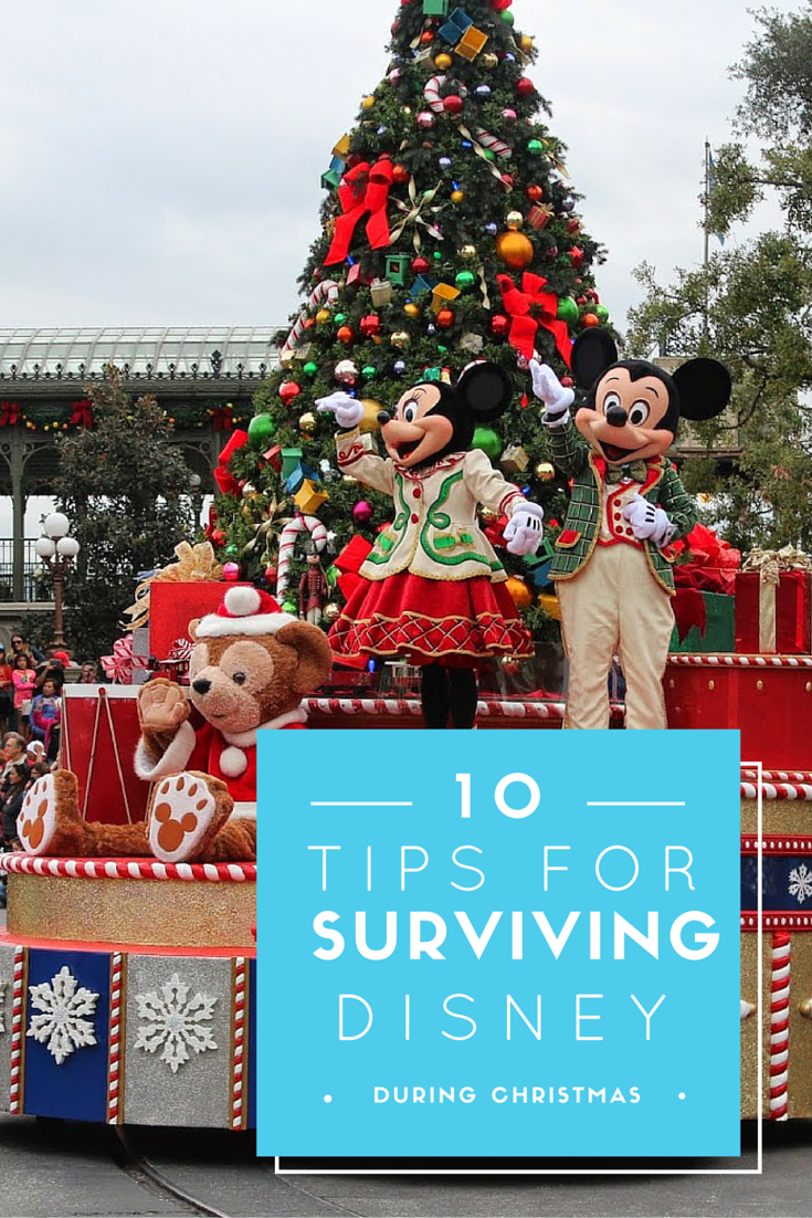 Tips for Visiting Disney World During Christmas
