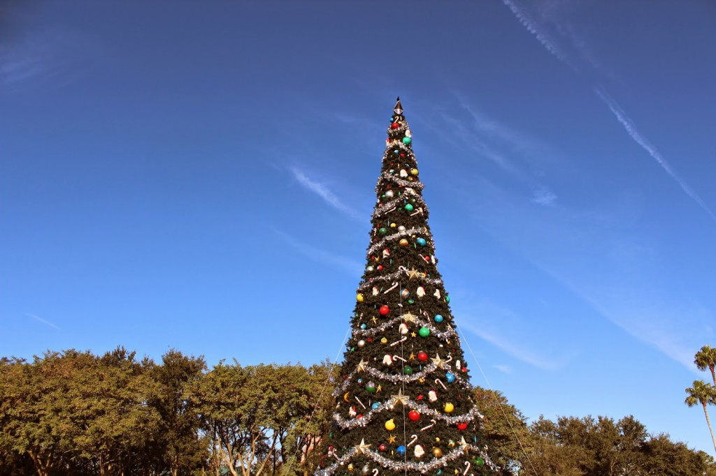 disney world hollywood studios Christmas Tree
