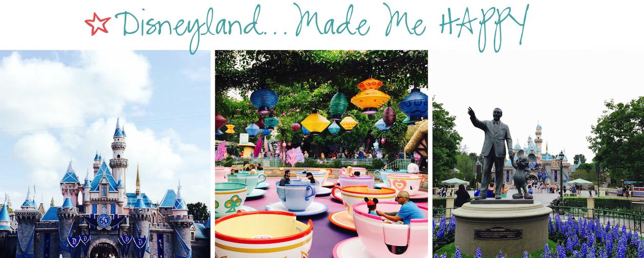 Disneyland 12 months of happiness