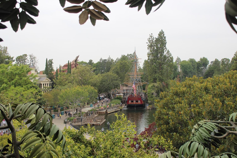 Disneyland View from Tarzan's Treehouse