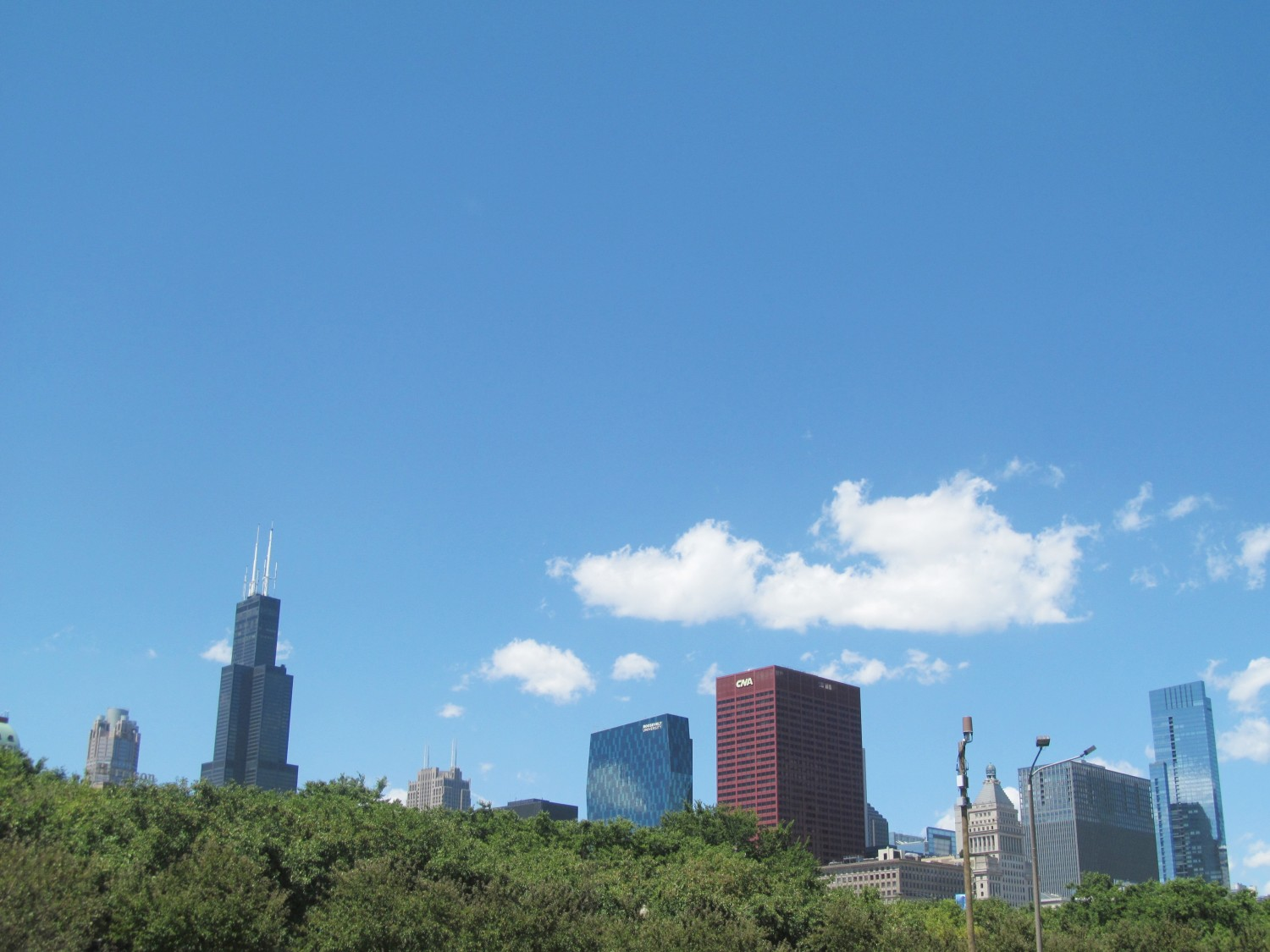 Chicago skyline from Lollapalooza