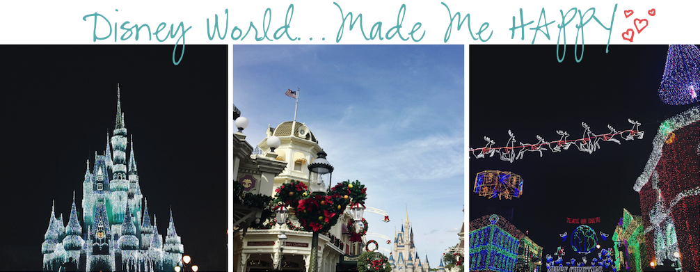 12 Months of Happiness Disney World
