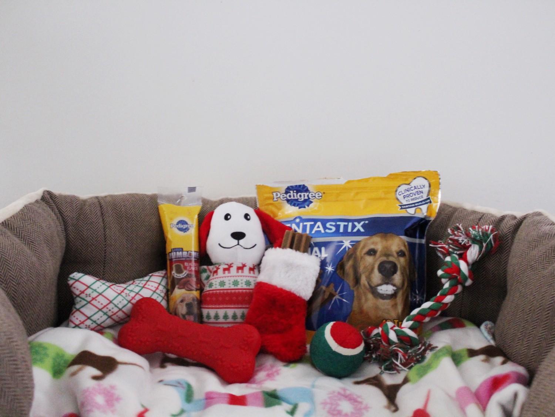 Fun Christmas Presents for Your Dog