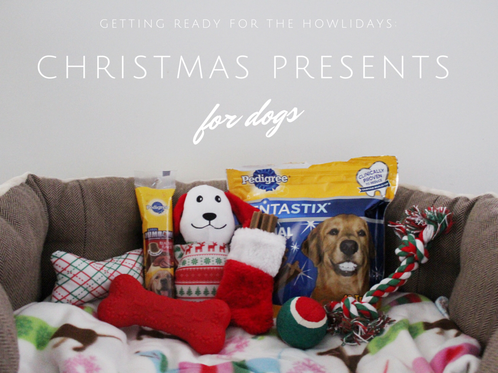 getting ready for the howlidays christmas presents for dogs - Christmas Presents For Dogs