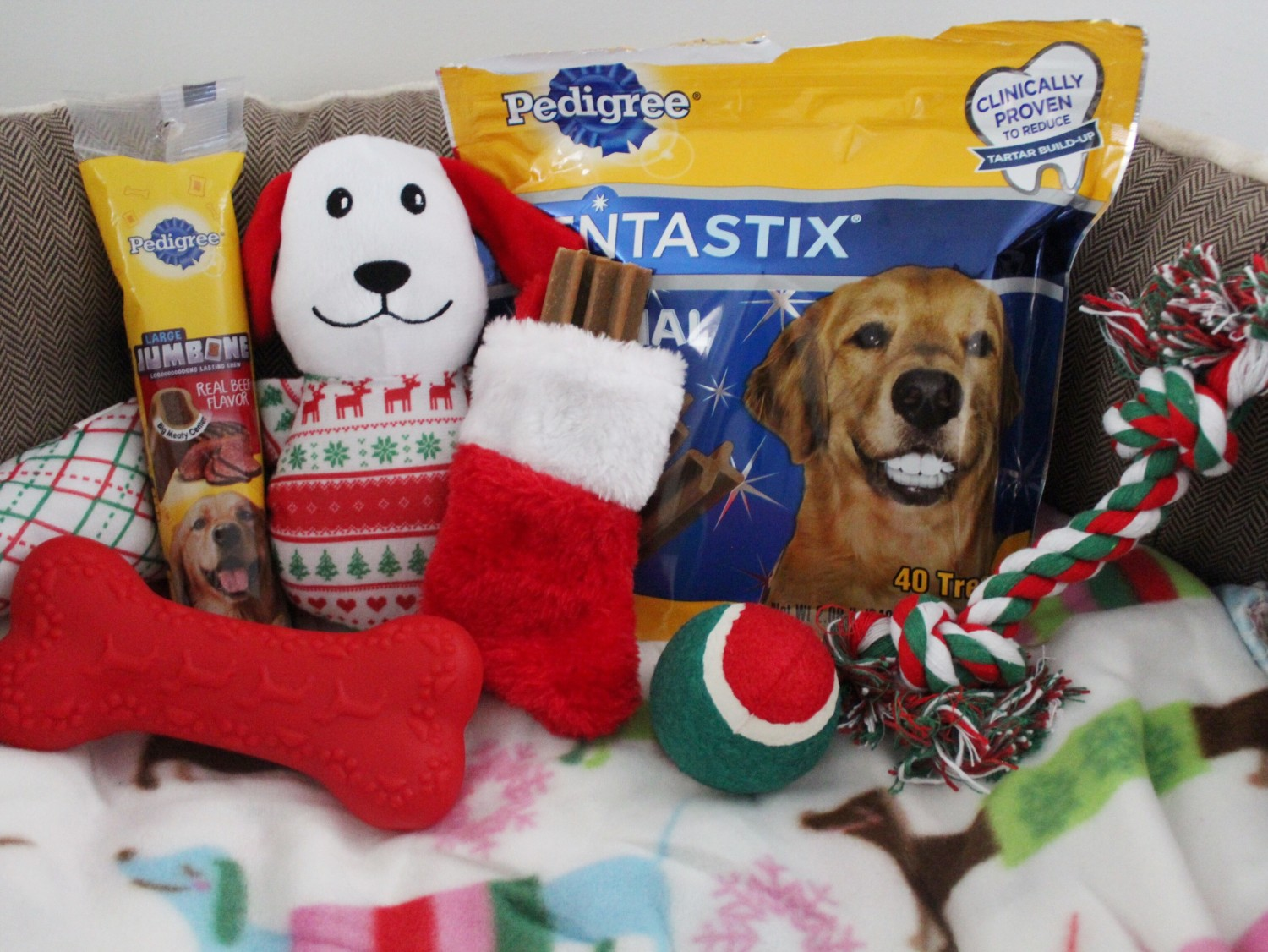 Getting Your Dog Christmas Presents