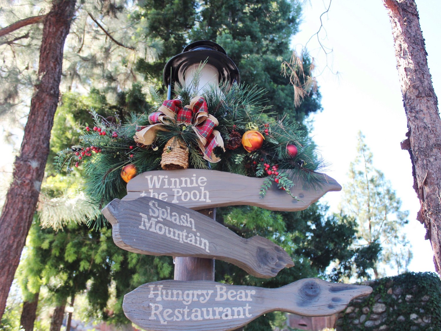 Disneyland Critter Country During the Holidays