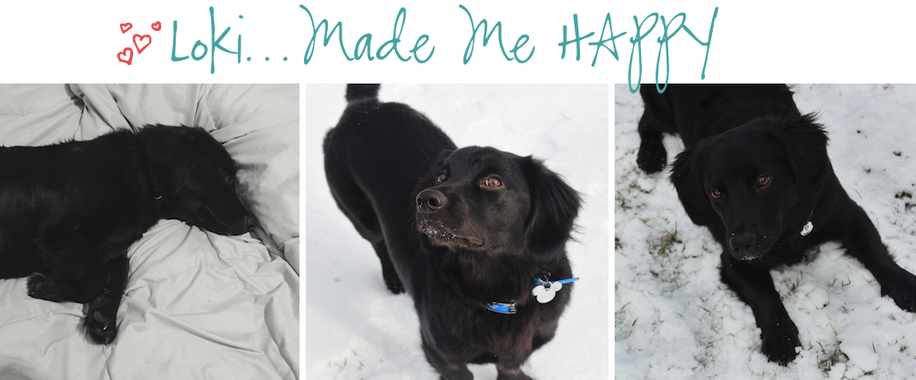 12 Months of Happiness Loki