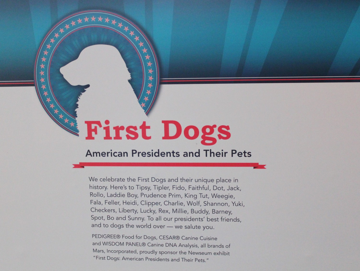 Newseum First Dogs Exhibit