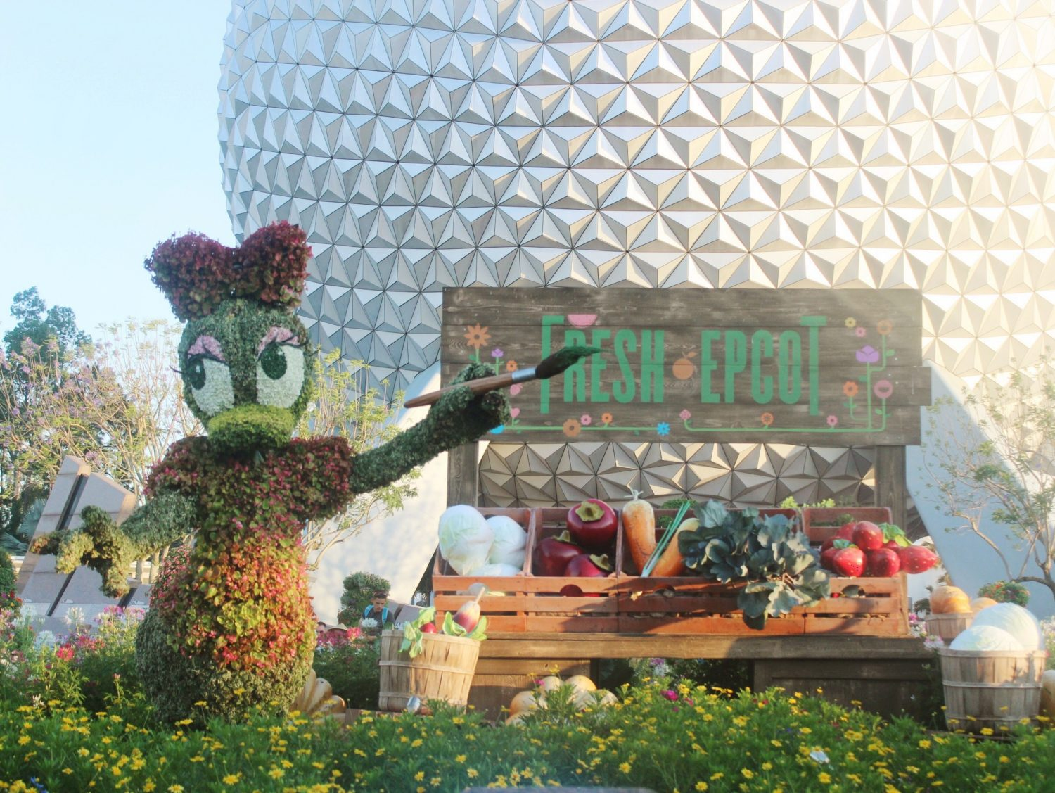 Epcot International Flower and Garden Festival Daisy