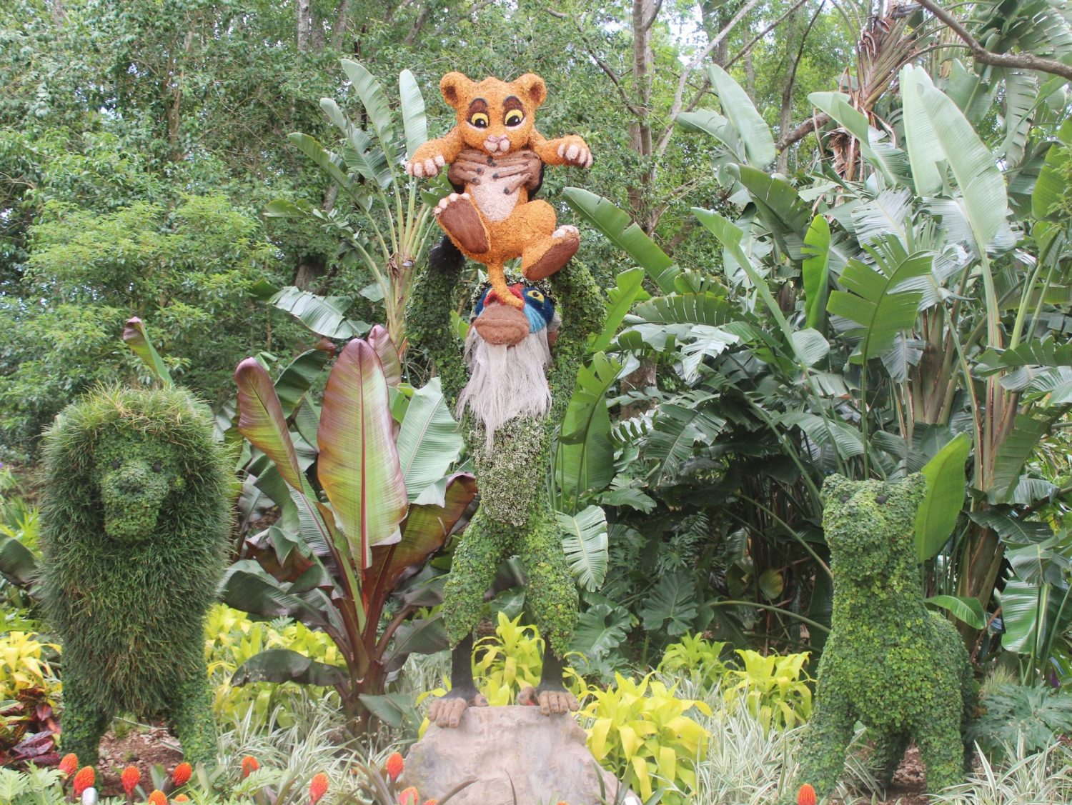 Epcot International Flower and Garden Festival Lion King