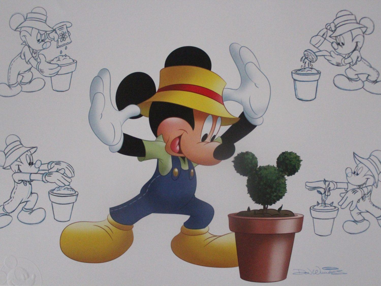 Epcot International Flower and Garden Festival Passholder Print