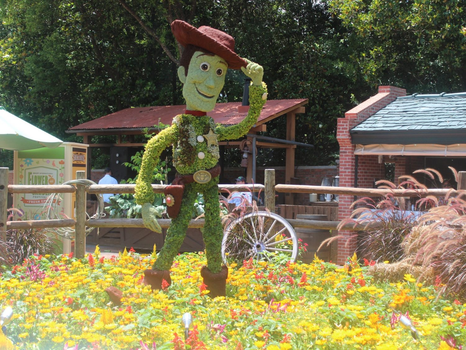 Epcot International Flower and Garden Festival Woody