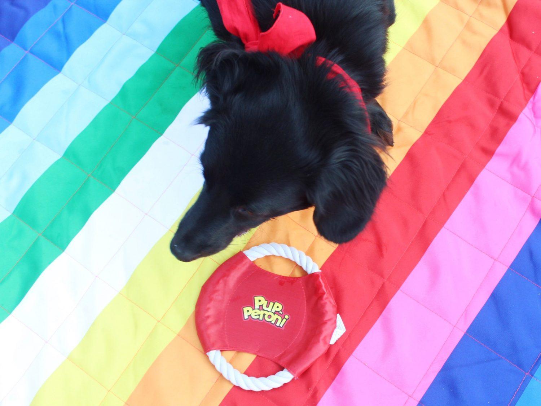 Pup-Peroni Dog Toys