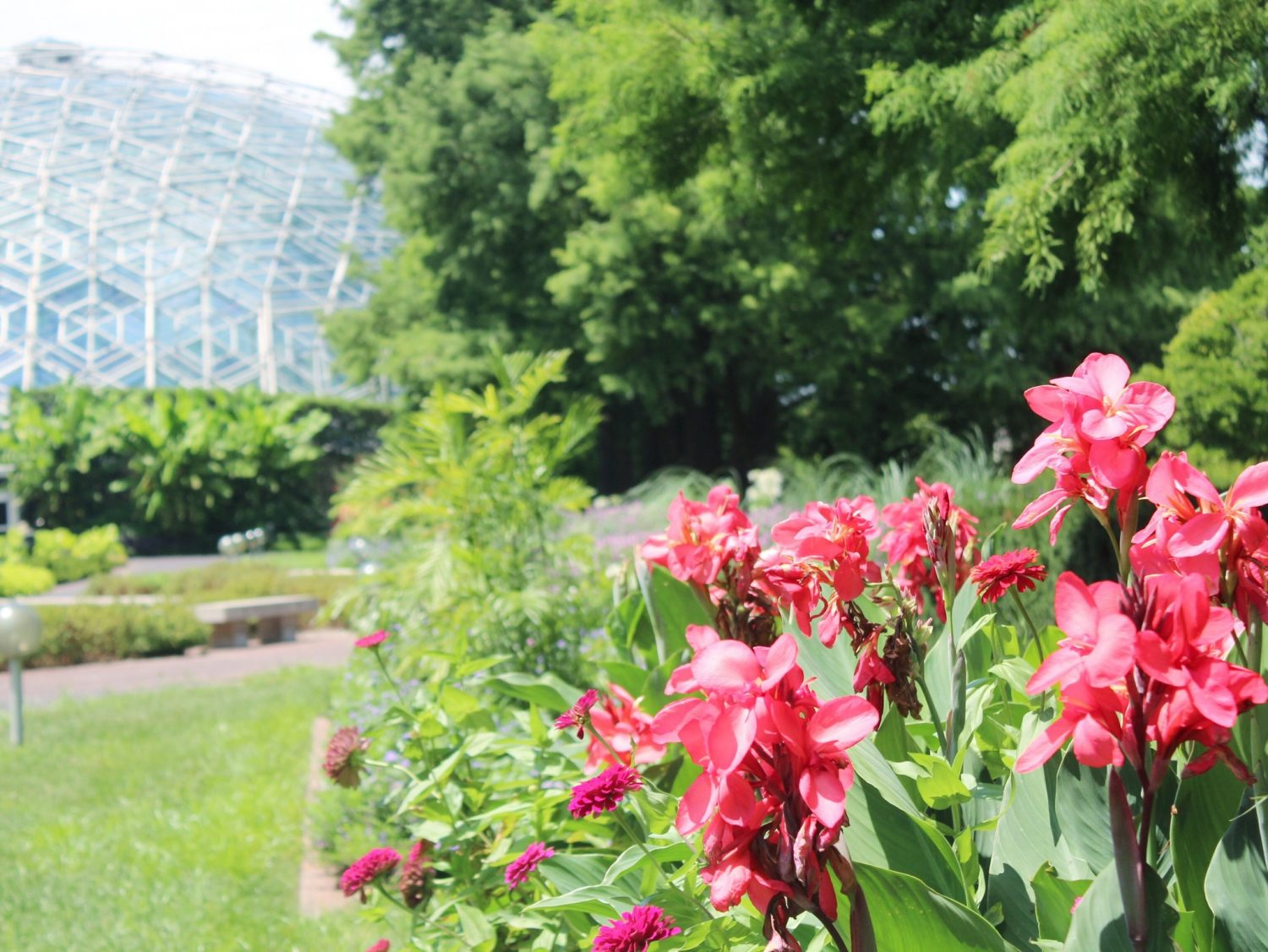 Missouri Botanical Garden Dome