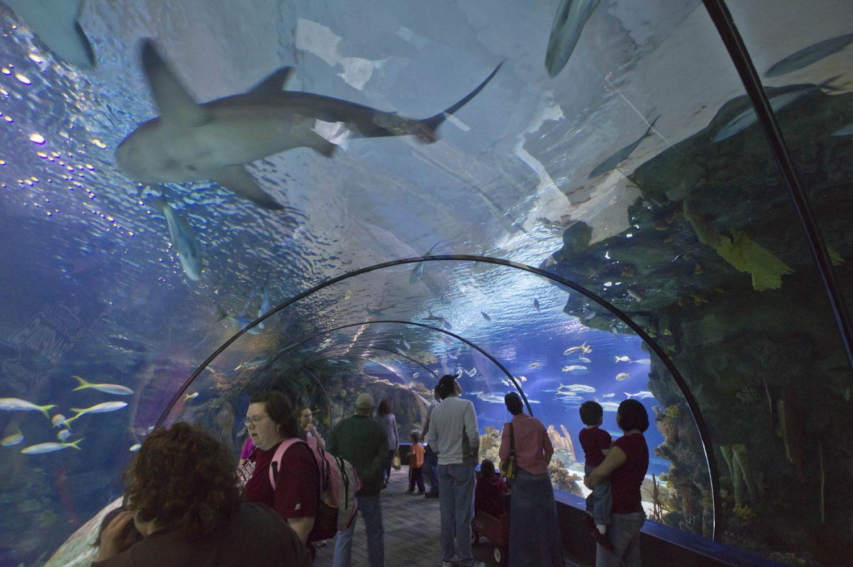 Nebraska Doorly Aquarium