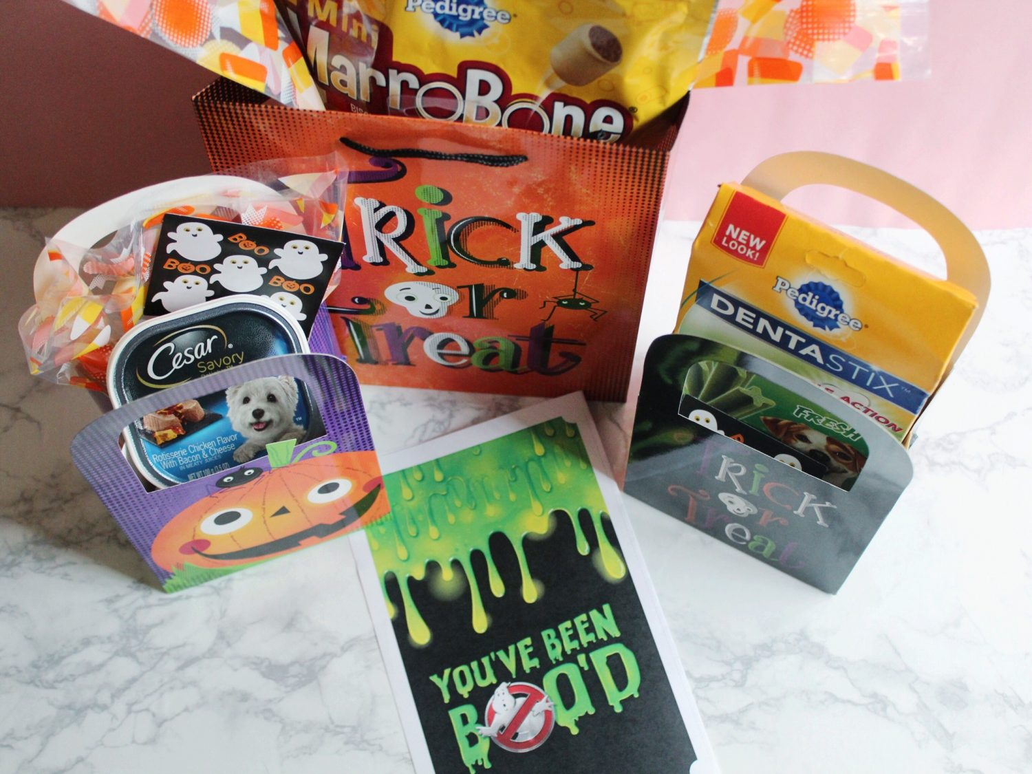 Booitforward halloween kit for dogs
