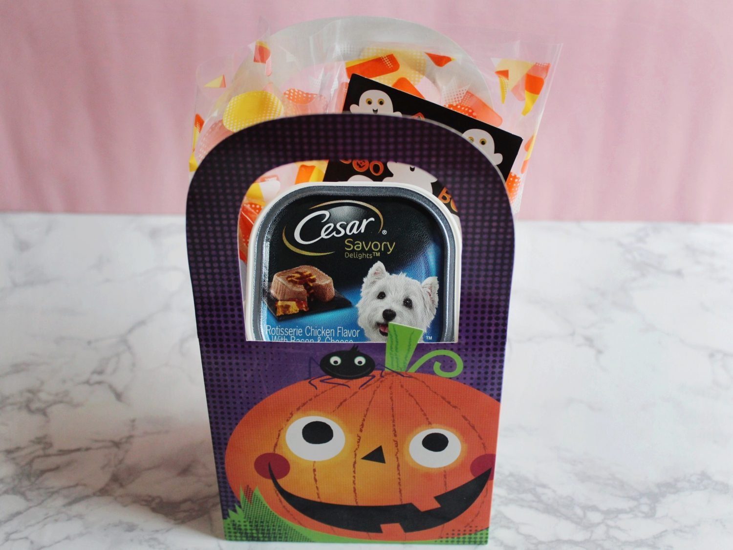 halloween kit for pets
