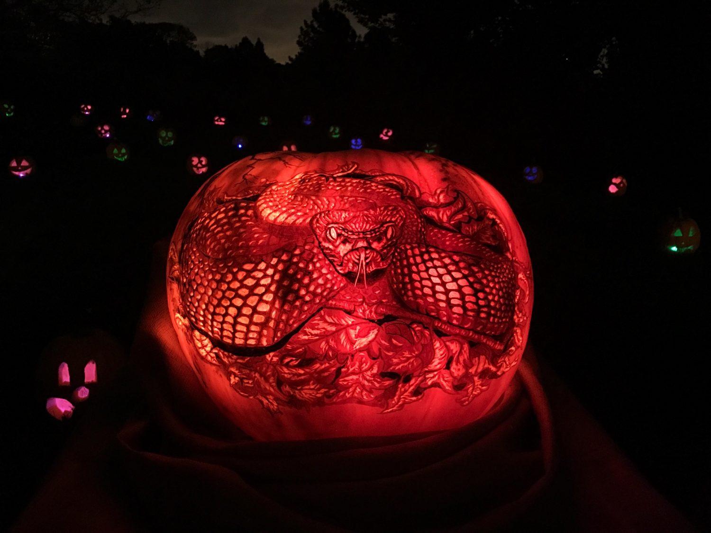Night of 1,000 Jack-o'-Lanterns at the Chicago Botanic Garden