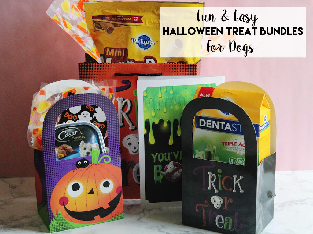 Halloween Treat Bundles for Dogs