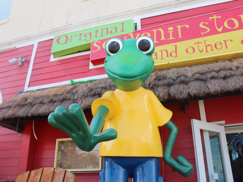 Nassau Señor Frog's