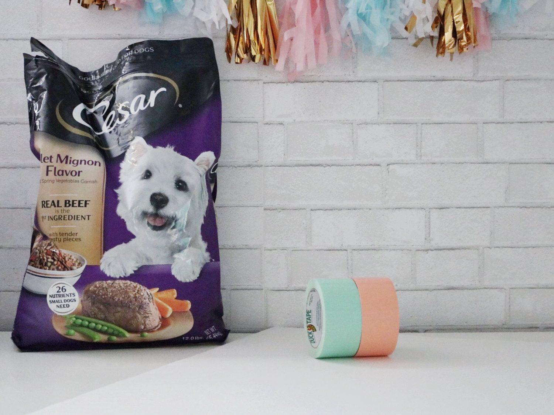 DIY Dog Placemat Tutorial