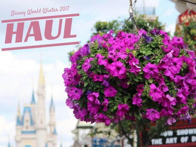 Disney World Haul