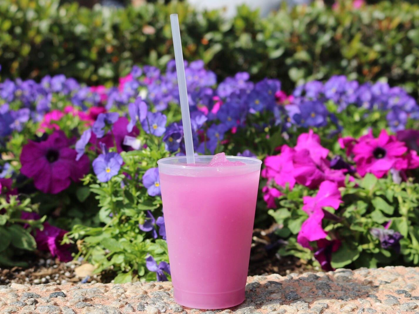 Epcot International Flower and Garden Festival violet lemonade