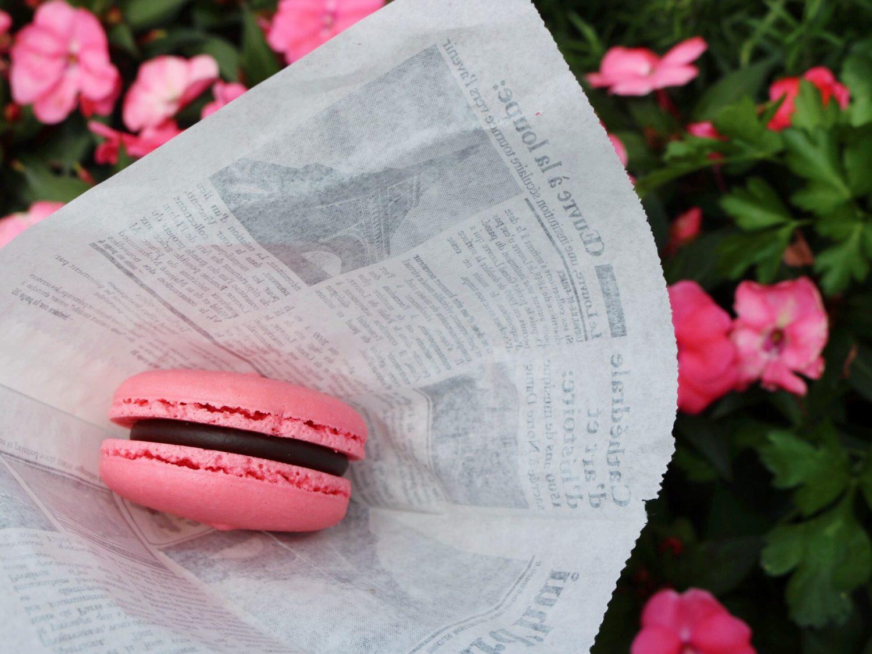 Epcot International Flower and Garden Festival Macaron Chocolat Framboise