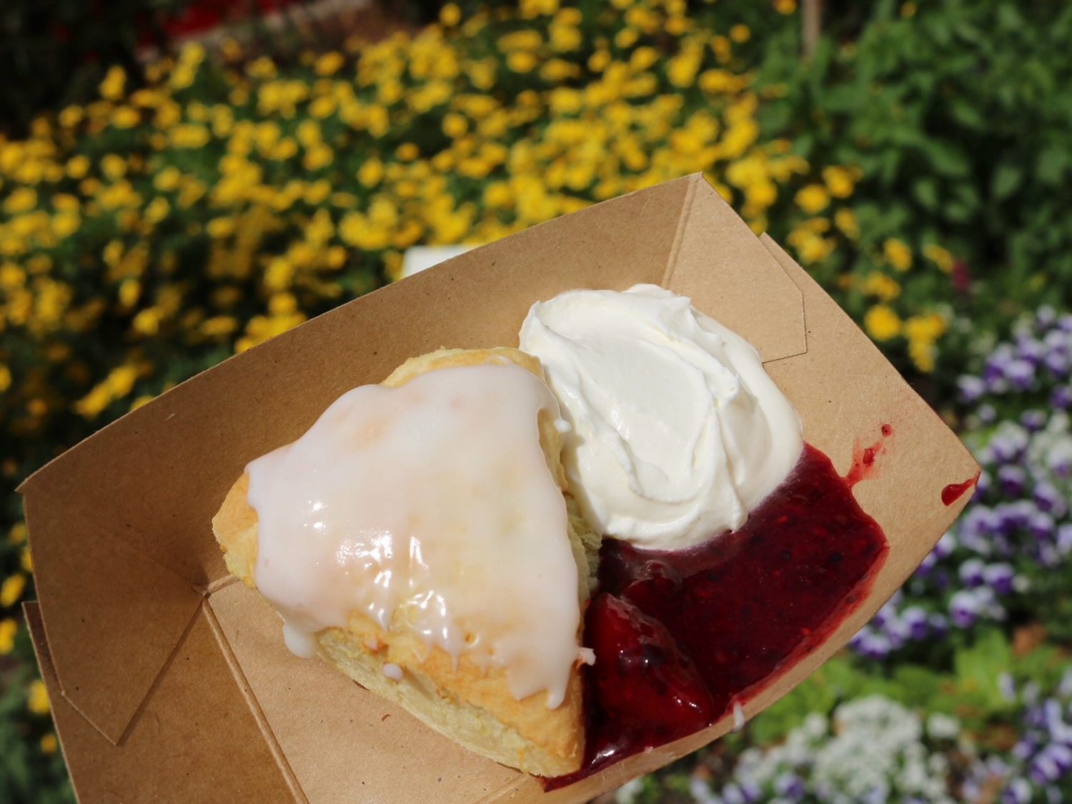 Epcot International Flower and Garden Festival Freshly Baked Lemon Scone with Crème Fraîche and Mixed Berries