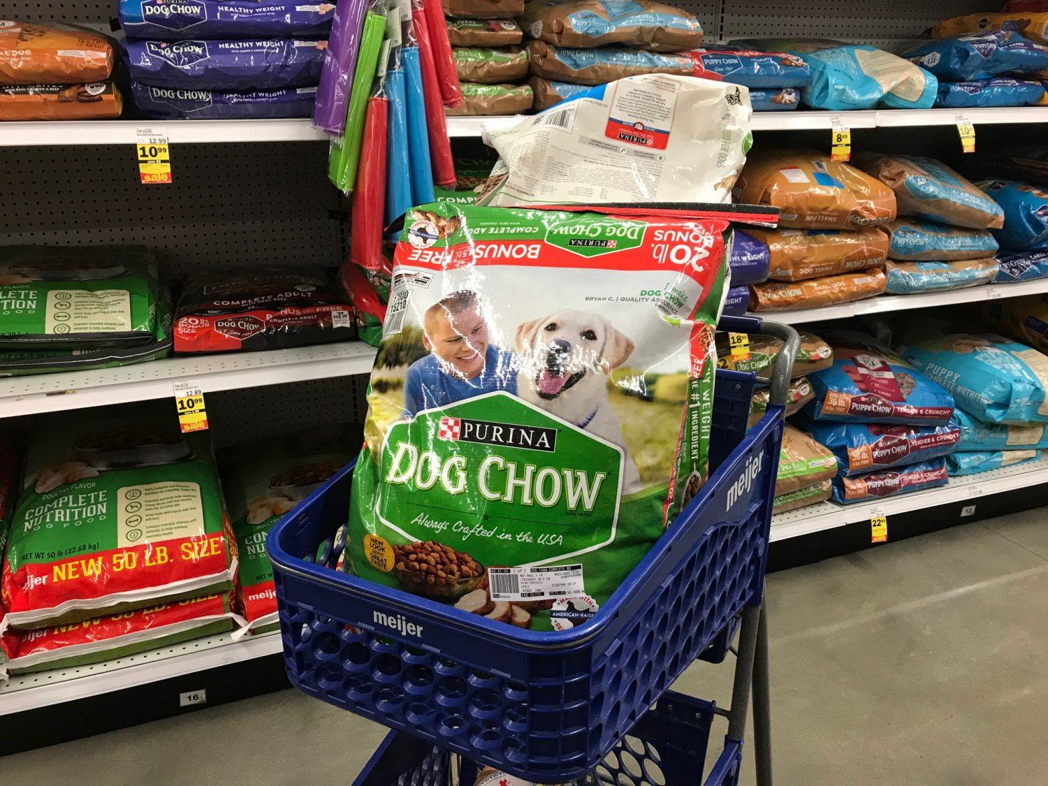 Purina Dog Chow Complete Adult with Real Chicken Dog Food