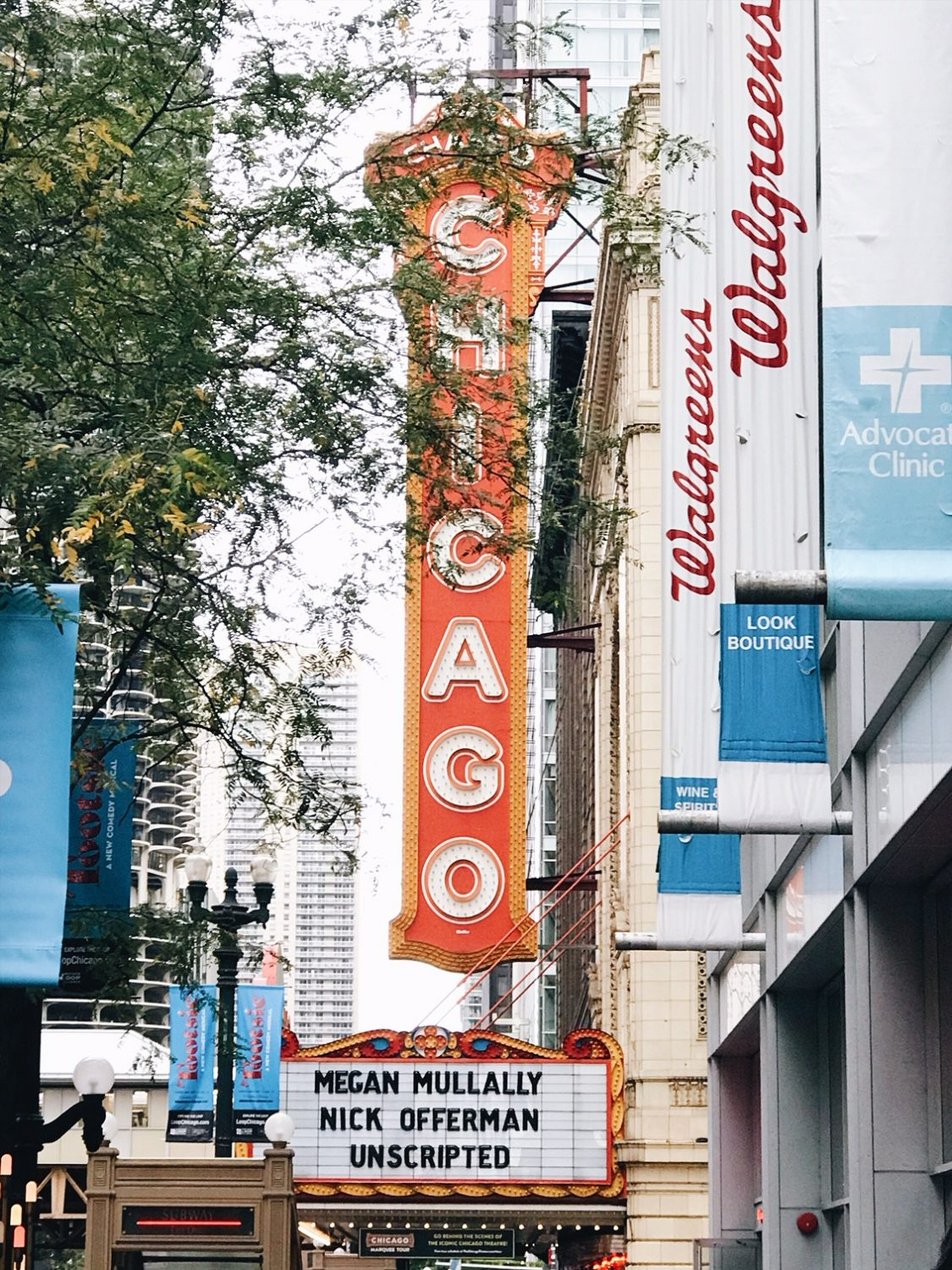Iconic Chicago Theatre