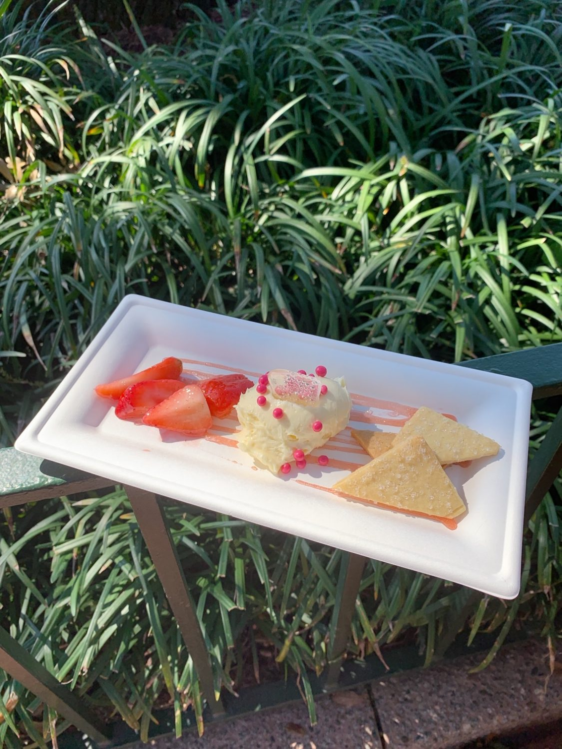 Epcot International Festival of the Arts Deconstructed Strawberry Cheesecake