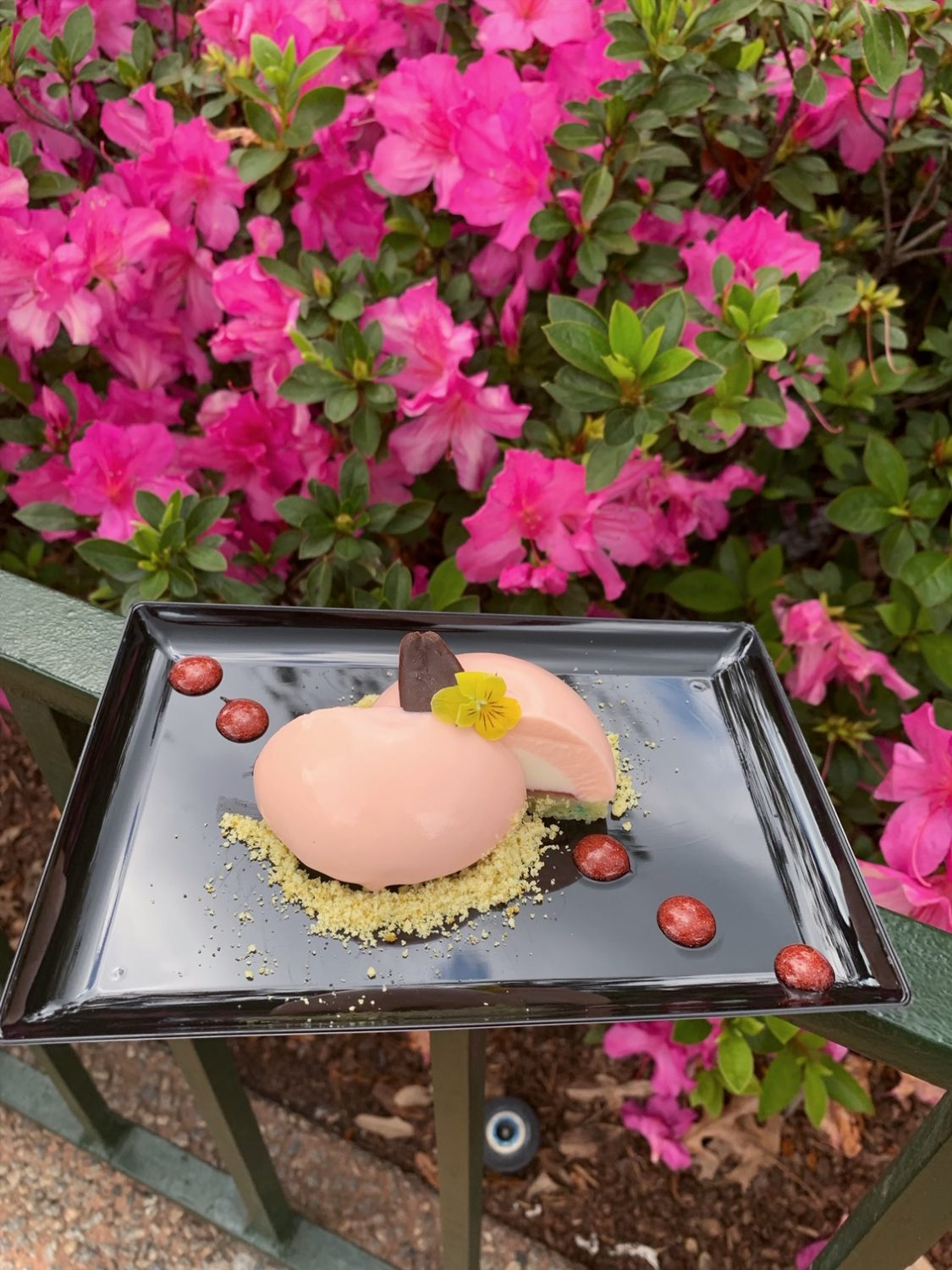 Epcot International Festival of the Arts Vanilla, Rose Water and Pistachio Panna Cotta