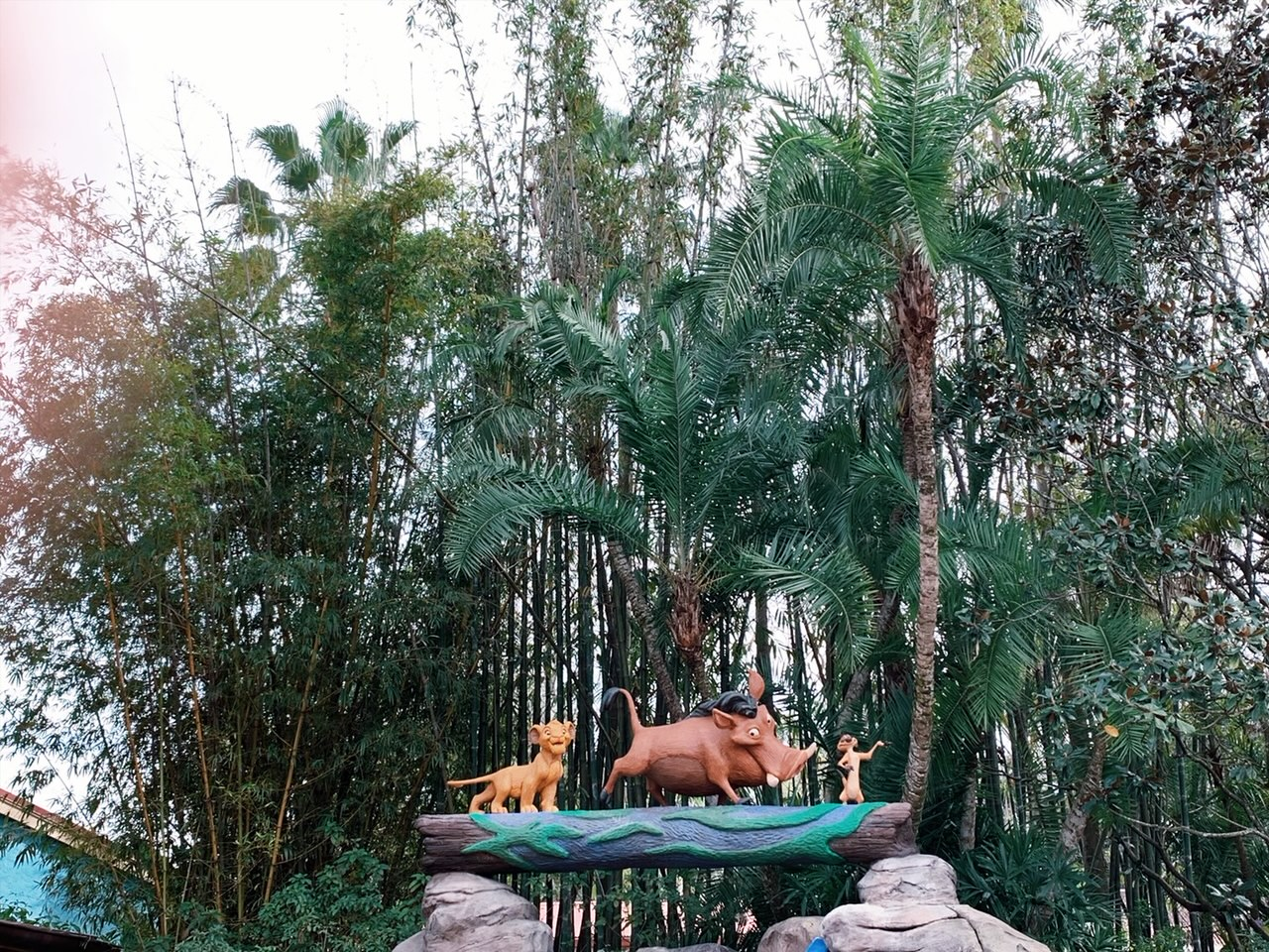 Disney World Animal Kingdom Lion King Photo Opp