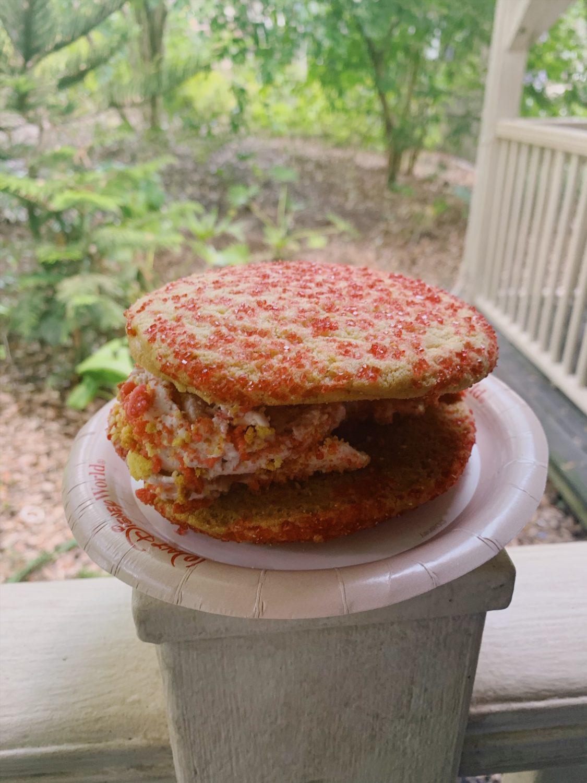Animal Kingdom Strawberry Shortcake Ice Cream Sandwich
