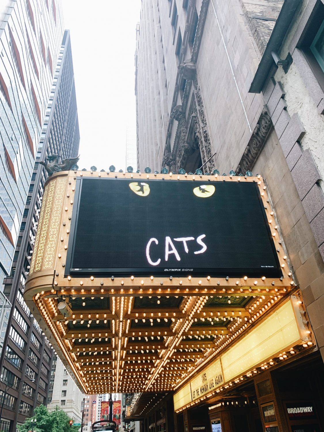 Cats Broadway in Chicago