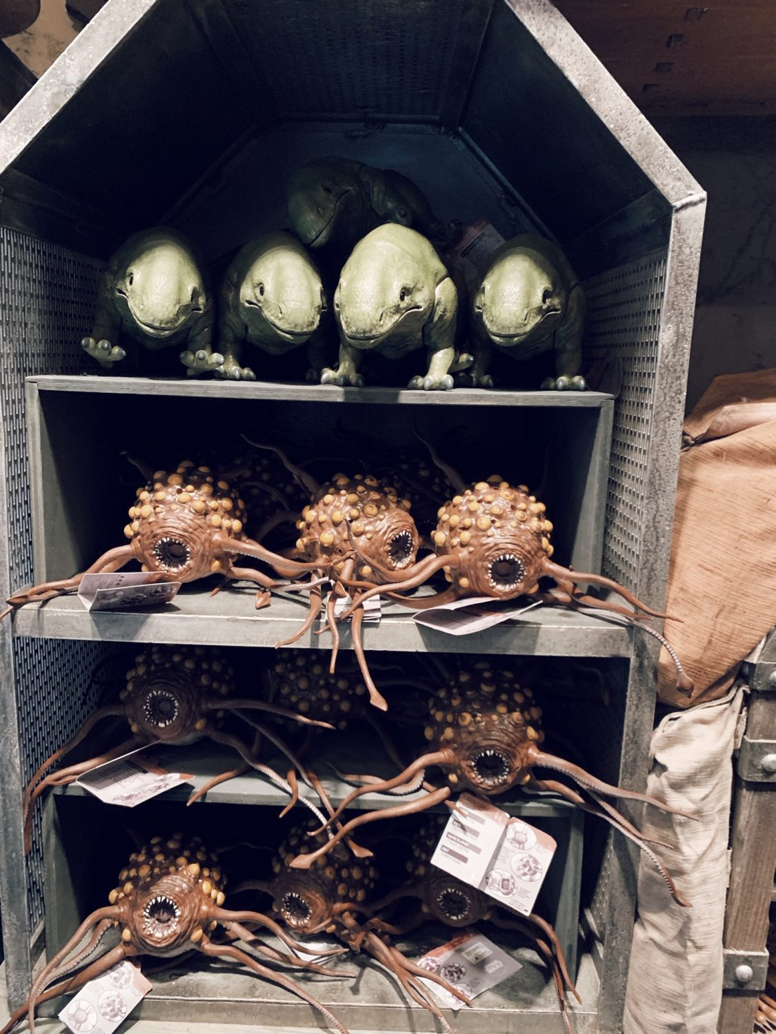 A Guide to Star Wars: Galaxy's Edge in Disney World Shopping
