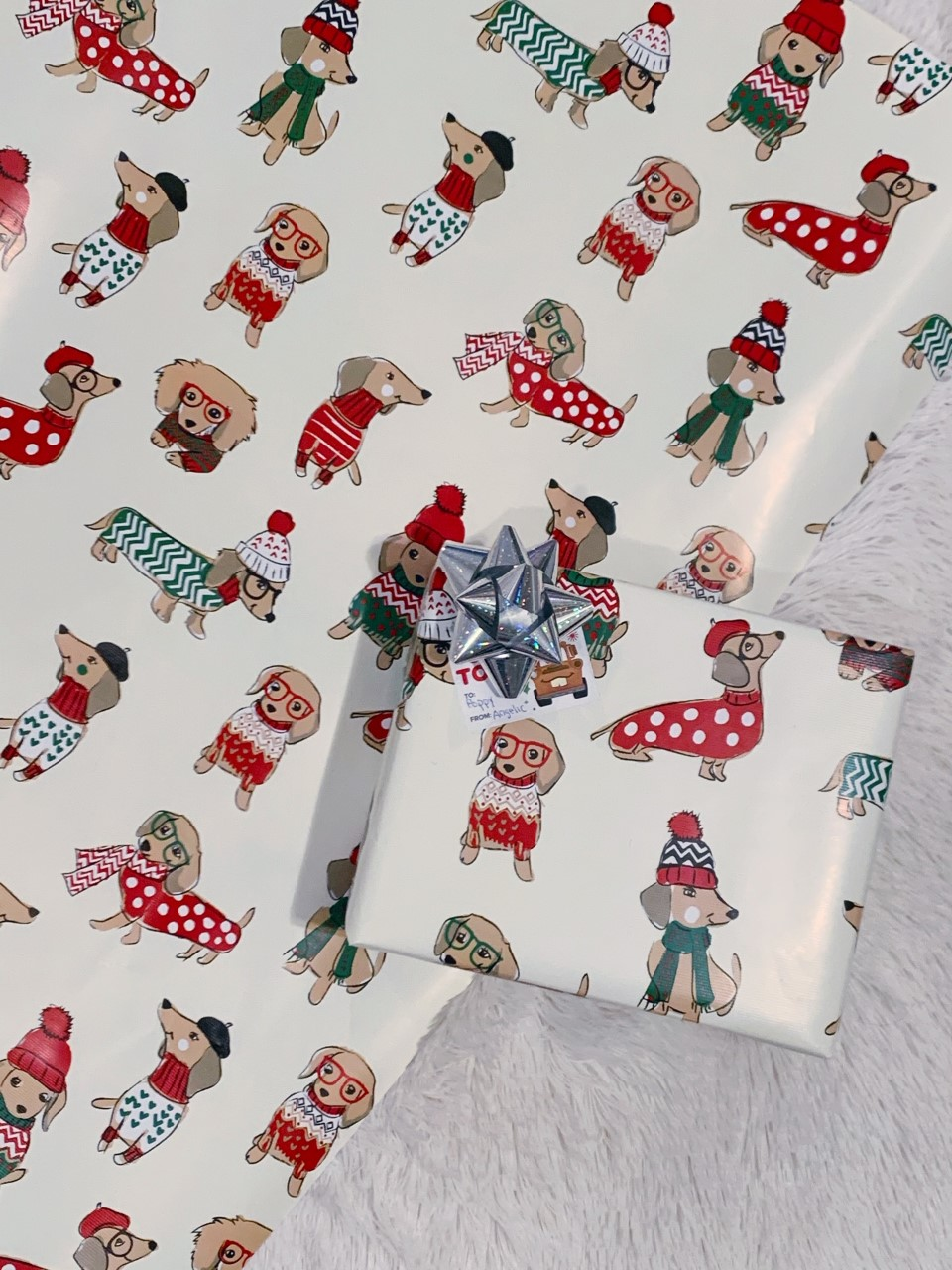 Cute Dachsund Wrapping Paper