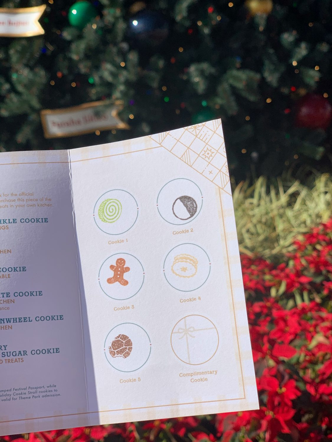 Epcot International Festival of the Holidays Cookie Stroll