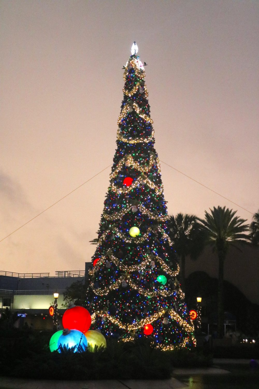 Hollywood Studios During Christmastime