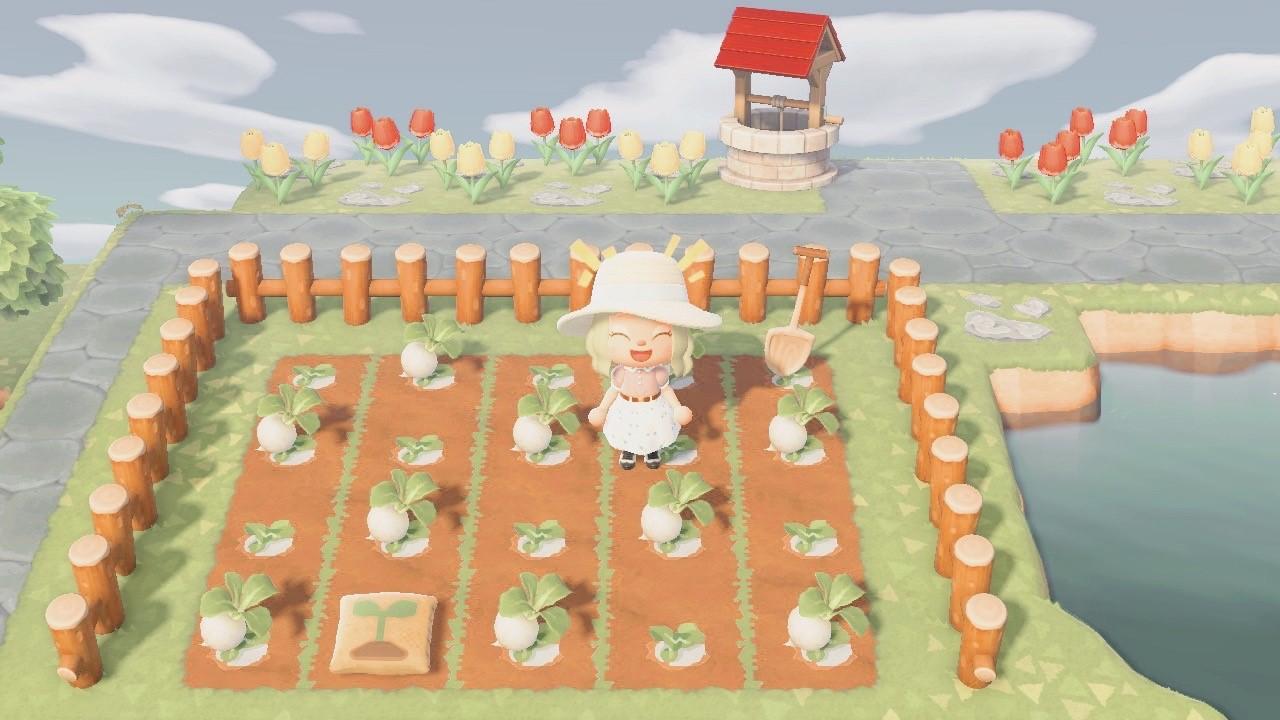 Animal Crossing: New Horizons Turnip Farm