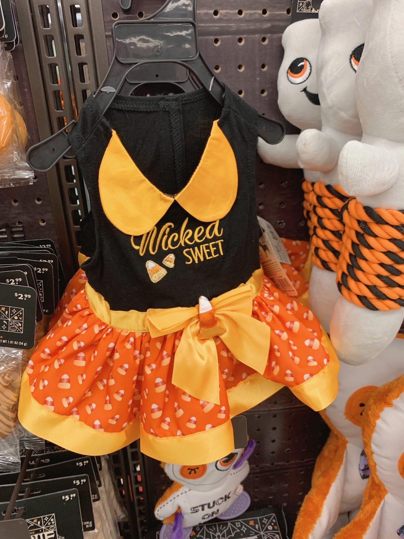 Halloween Costume for dogs Petco Halloween